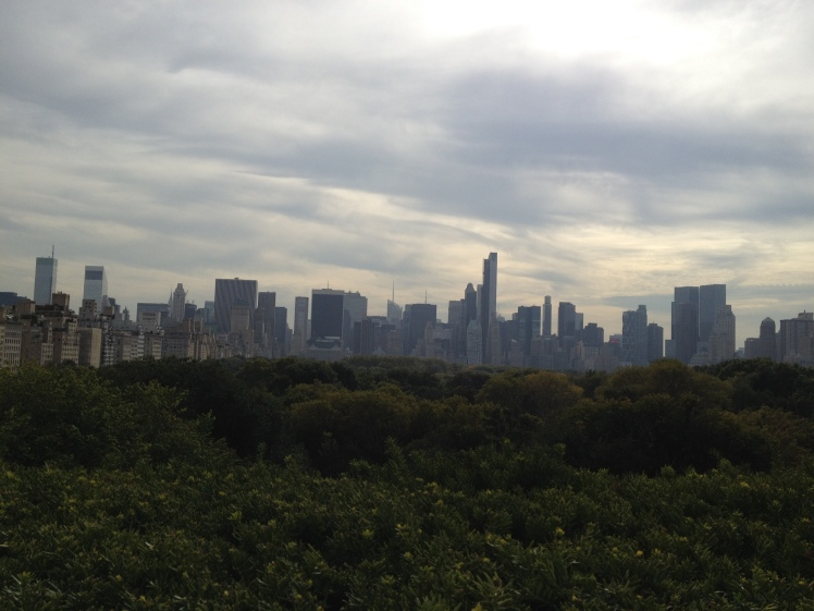Been to NY so many times but never made it to the MET. It is a MUST, if you are there. I loved it but my favourite was the view of the city from the rooftop.